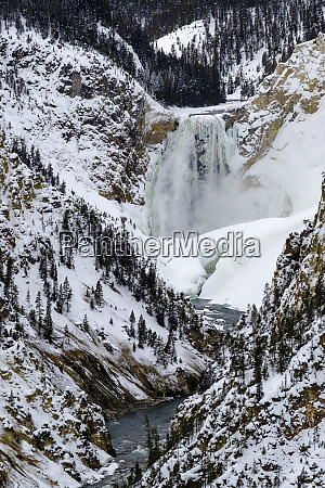 usa yellowstone canyon lower falls winter