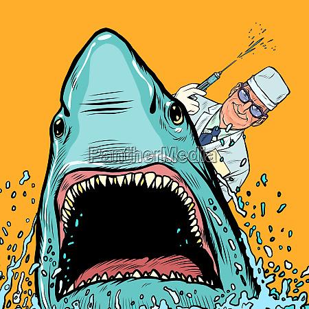 ein zahnarzt und ein hai macht