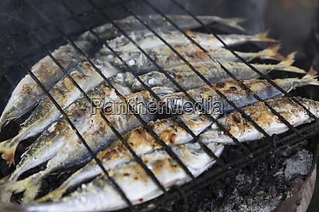 ganze sardinen kochen auf grill
