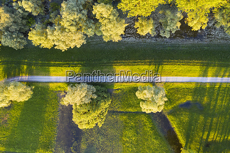 fields and meadows at the isar