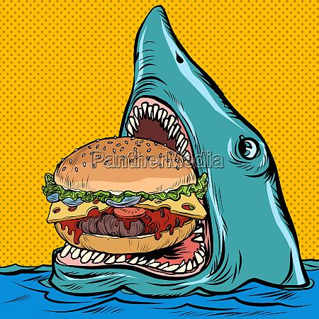 hungriger hai isst einen burger fast