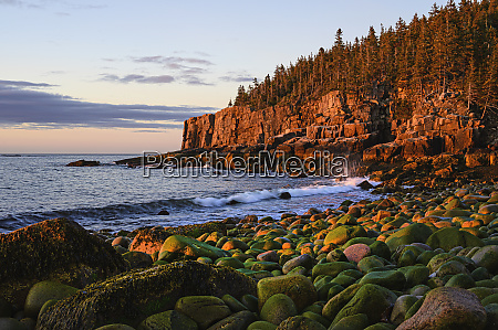 otter cliff at sunrise in acadia