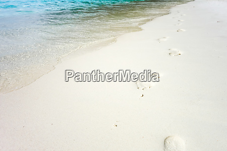 fussabdruecke an einem tropischen strand