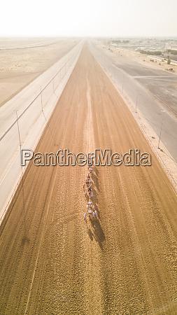 luftaufnahme von jockeys und kamelen auf