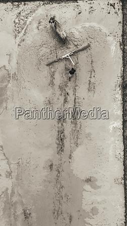 luftaufnahme eines stiers in palawan