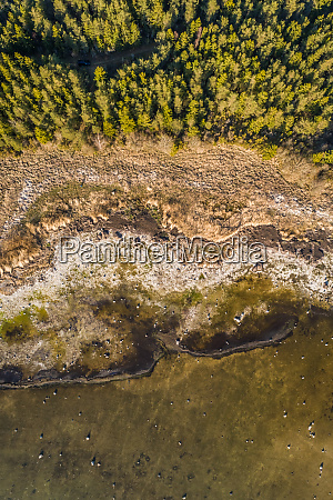 luftaufnahme der algenbluete im meer am