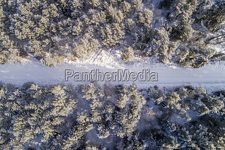 aerial view of a road covered