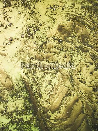 abstrakte luftaufnahme des gruenlichen baltischen meeres