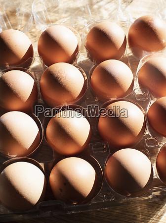 stillleben, von, eiern, in, eierschale, overhead-ansicht - 27458407