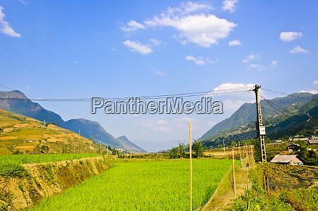 landschaft der sapa reisterrassenfelder vietnam