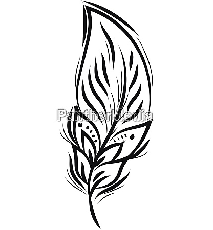 black and white feather design vector