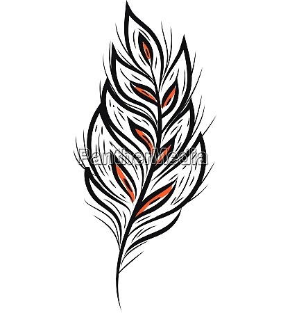 a black feather vector or color