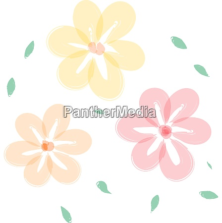 yellow flowers vector or color illustration