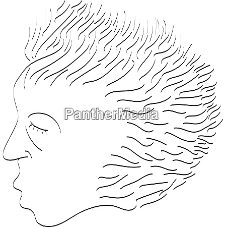 a line art drawing of a