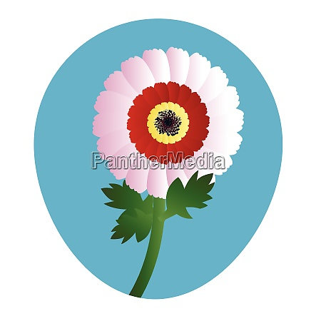vector illustration of white red and