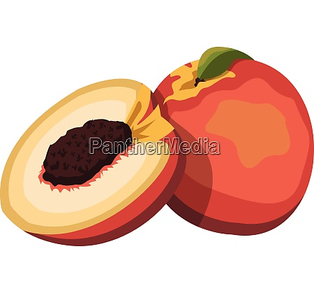 cartoon of a orange red and