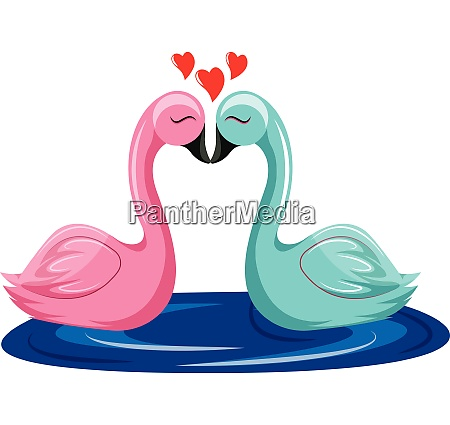 pink and blue swan kissing in