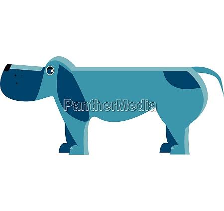 ein spaniel hund vektor oder farbe