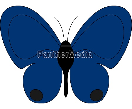 cute blue butterfly illustration vector on