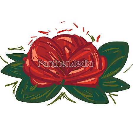 rose flower with green leaves vector