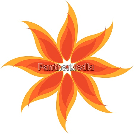 flower with yellow petals vector or