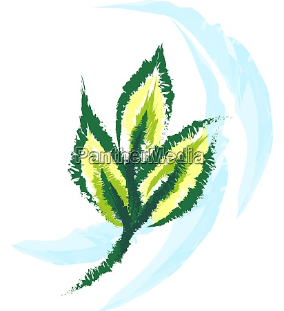 drawing of a wind and leaves