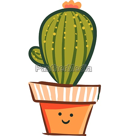 a lively cactus plant with a