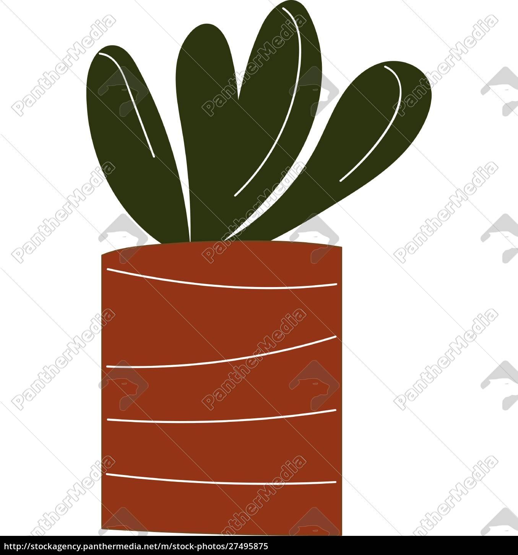 einfache, vektor-illustration, einer, pflanze, mit, runden - 27495875