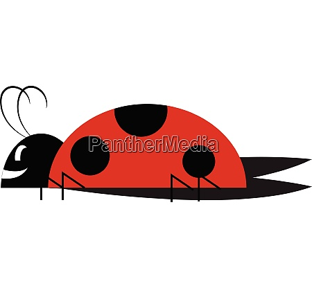 a cute little lady bug vector