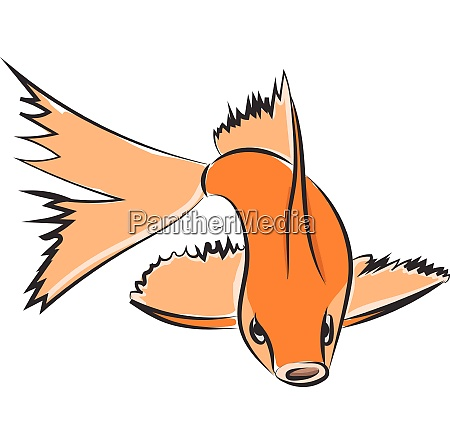 drawing of an orange fish vector