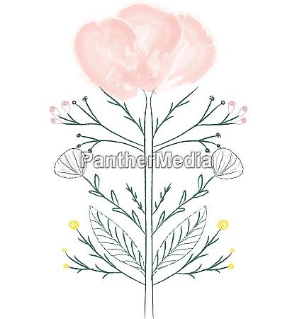 malerei eines rosafarbenen blumenvektors oder einer
