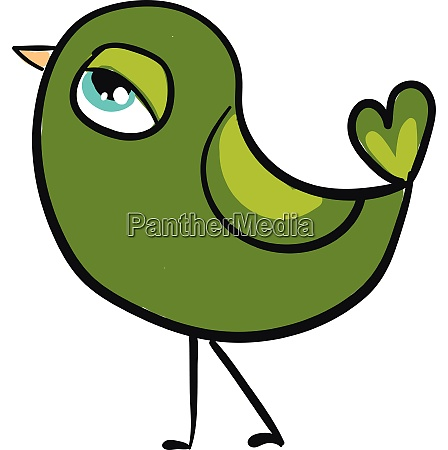 a green bird vector or color