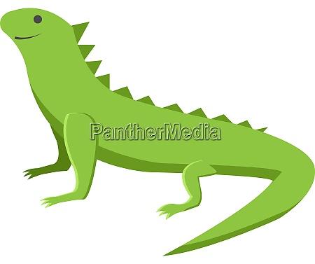 green lizard illustration vector on white