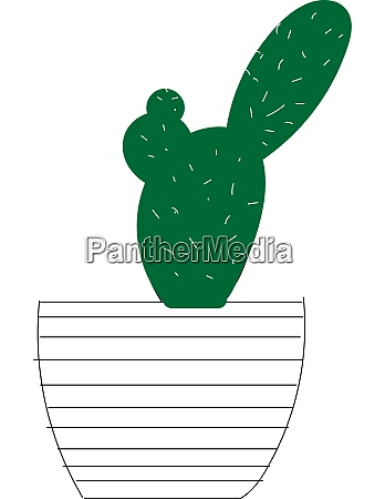 a thorny cactus vector or color