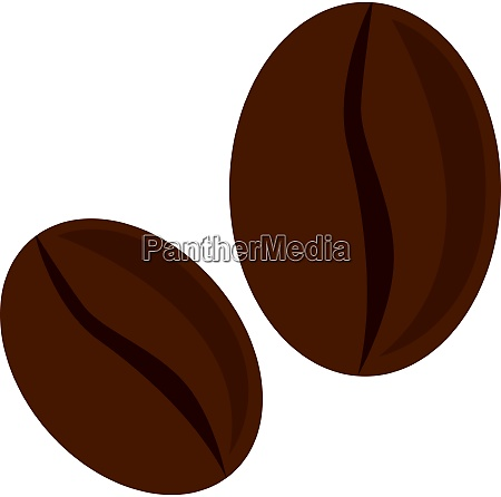 a coffee beans vector or color