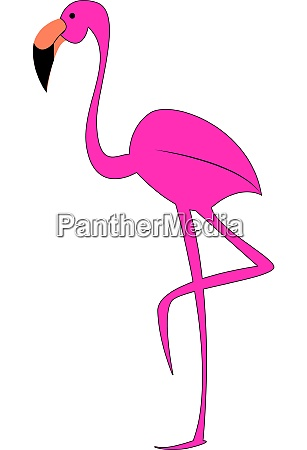 a long legged flamingo vector or