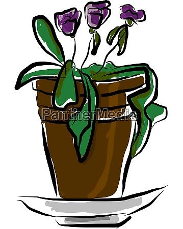 a flower pot vector or color