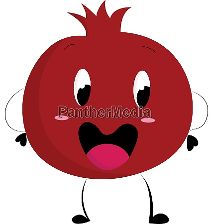 a happy pomegranate vector or color