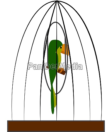 a green parrot in a cage