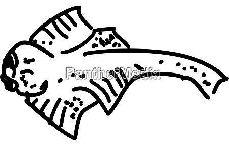 angel shark illustration vector on white