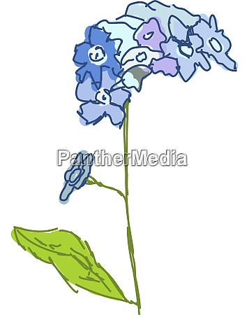 blue flower illustration vector on white