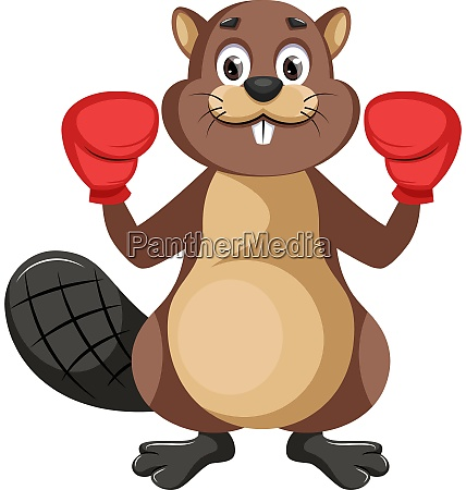 beaver with boxing gloves illustration vector