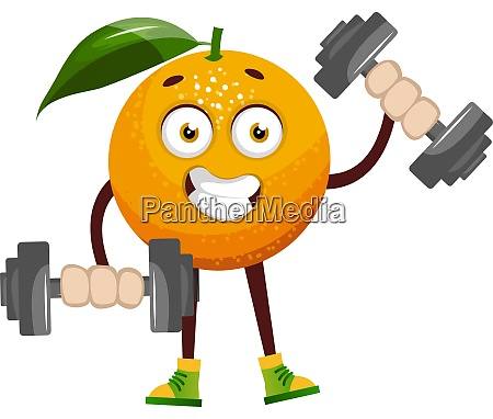 orange with weights illustration vector on