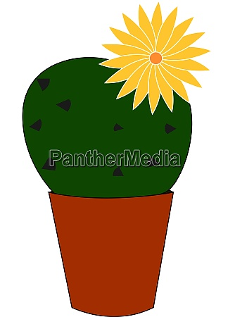 kaktus mit gelber blume illustration vektor