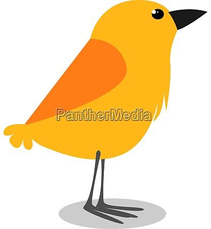 yellow bird illustration vector on white