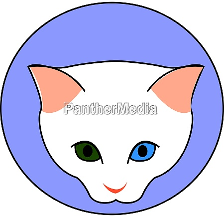 white cat with green and blue
