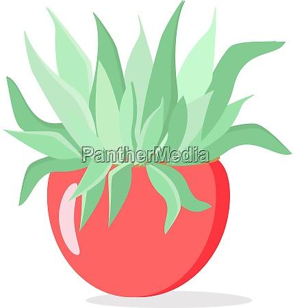 green herb illustration vector on white
