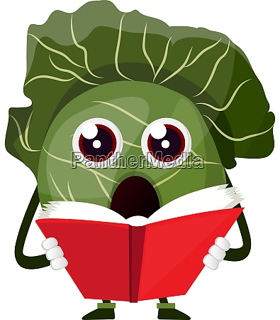 cabbage is reading a book illustration