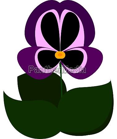 purple flower illustration vector on white