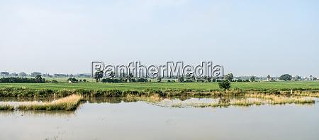 landschaftslandschaft der landwirtschaft feld in agrarindien